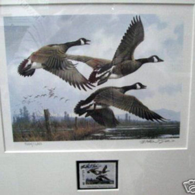 1984-oregon-waterfowl-stamp-and-print-by-m-sieves-rare