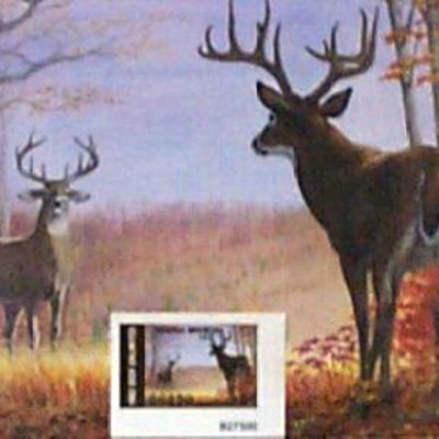 82-deer-unlimited-stamp-and-print-by-edward-j-bierly