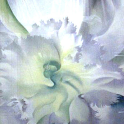an-orchid-by-okeeffe-1941-rare