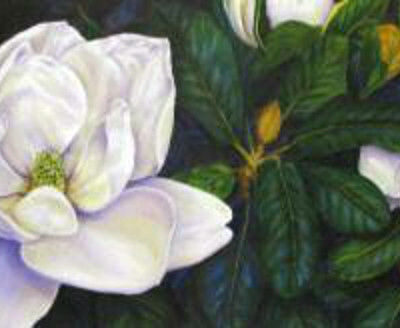 beauty-of-the-south-by-lee-rogers-magnolias-floral