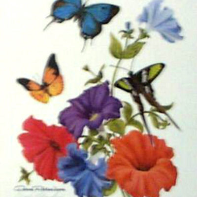 butterflies-with-petunias-by-donna-richardson-floral