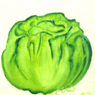 cabbage-by-helen-emery