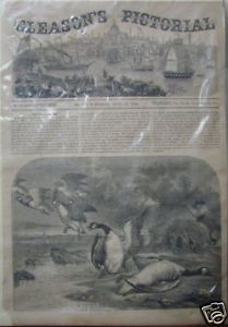 gleasons-pictorial-april-15-1854-boston-and-wild-fowl