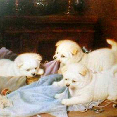 horatio-h-couldrey-the-little-mischief-makers-puppies